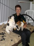 Luxury Units for indoor pets -  Even the staff like to go and give our guests a cuddle on the bed
