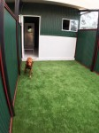 Luxury Units for indoor pets -  Room to stretch your legs