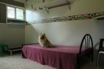 Luxury Units for indoor pets -  Mickey and Minnie themed unit is a big hit